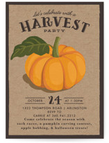 vintage pumpkin seeds