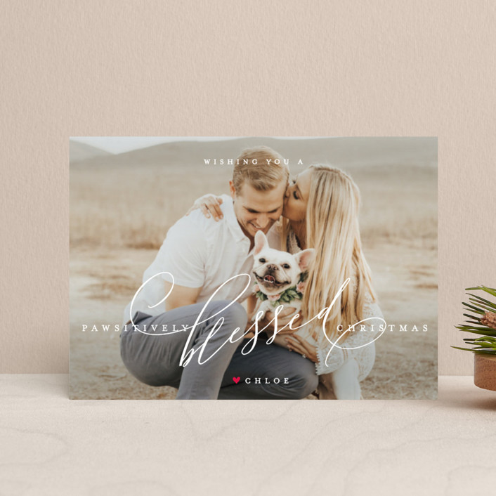 """pawsitively blessed"" - Holiday Postcards in Pine by Guess What Design Studio."