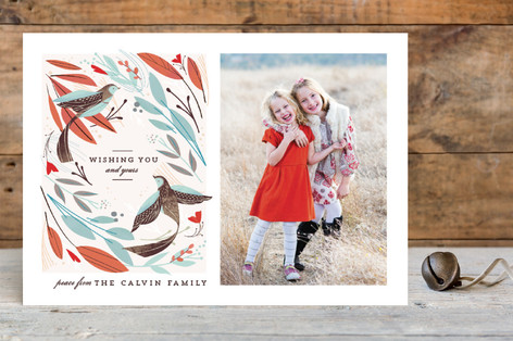 Winter Birds Holiday Postcards