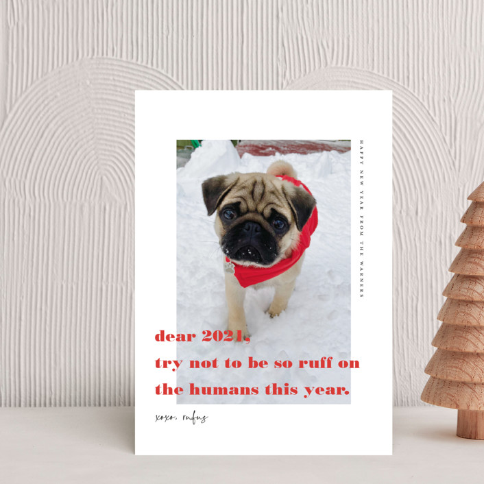 """dear 2021"" - Funny Holiday Postcards in Cranberry by Tanya Lee of Frooted Design."