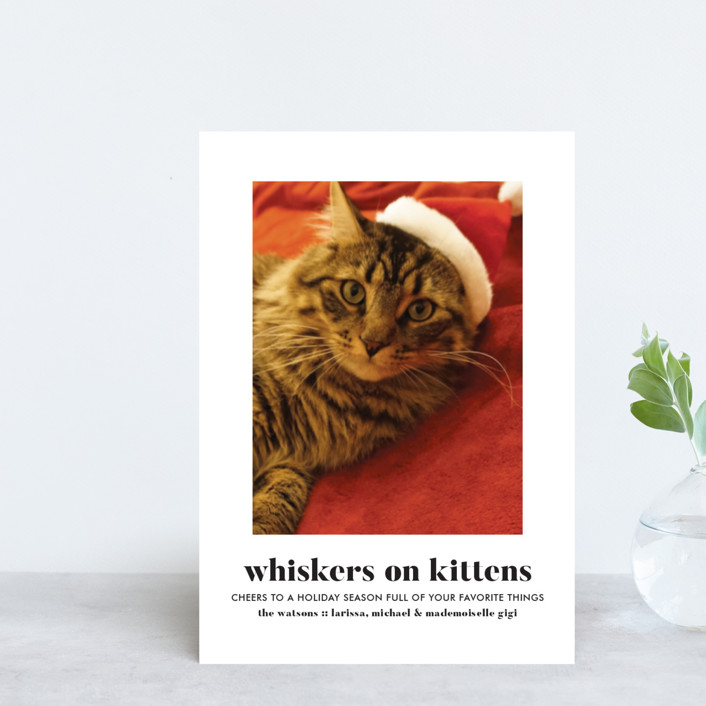 """Whiskers on Kittens"" - Holiday Postcards in Snow by Erika Firm."