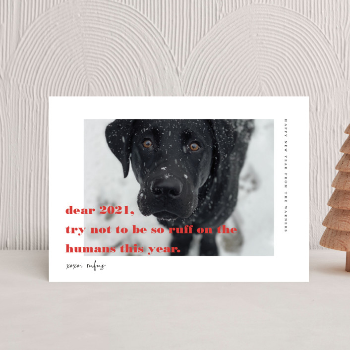"""""""dear 2021"""" - Holiday Postcards in Cranberry by Tanya Lee of Frooted Design."""