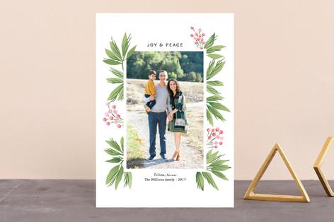 Festive Conifers Holiday Postcards