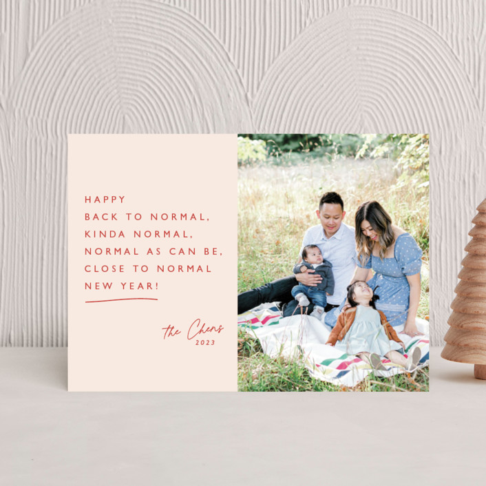 """""""Kinda Normal"""" - Holiday Postcards in Winter Rose by Caitlin Considine."""