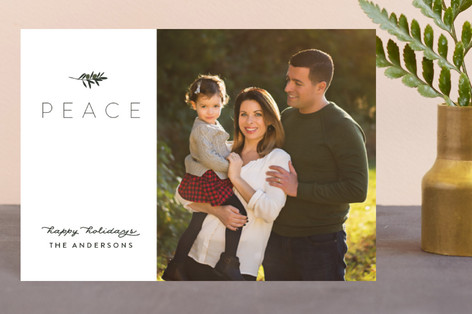 Olive Branch Holiday Postcards