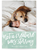 Not a Creature was Stirring... Holiday Postcards