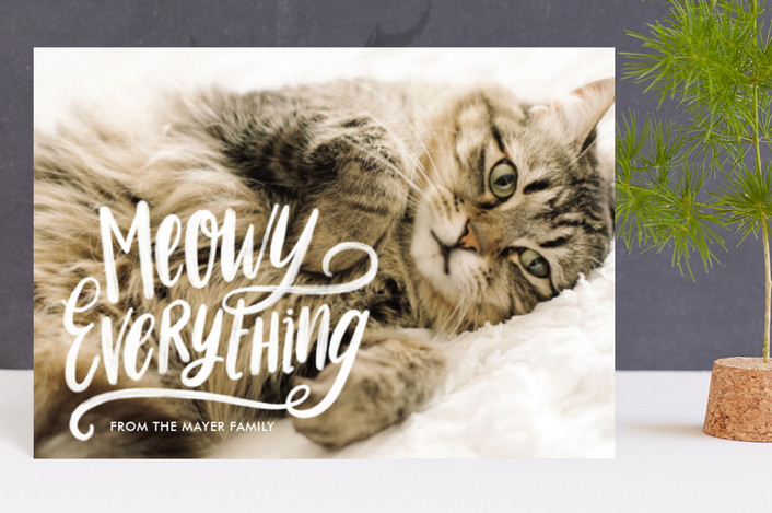 """Meowy Everything"" - Holiday Postcards in First Snow by Loree Mayer."