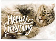 Meowy Everything by Loree Mayer
