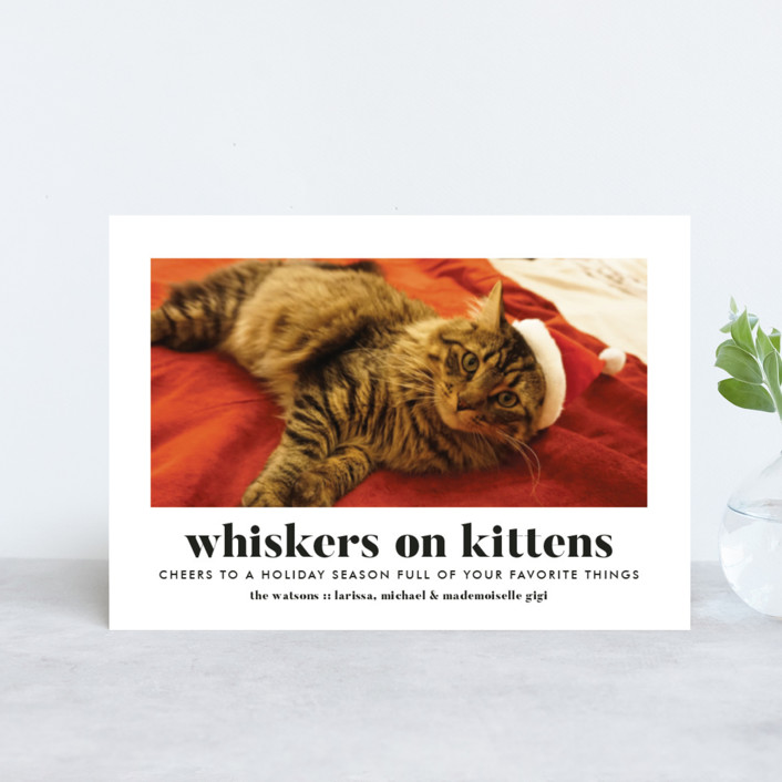 """""""Whiskers on Kittens"""" - Holiday Postcards in Snow by Erika Firm."""