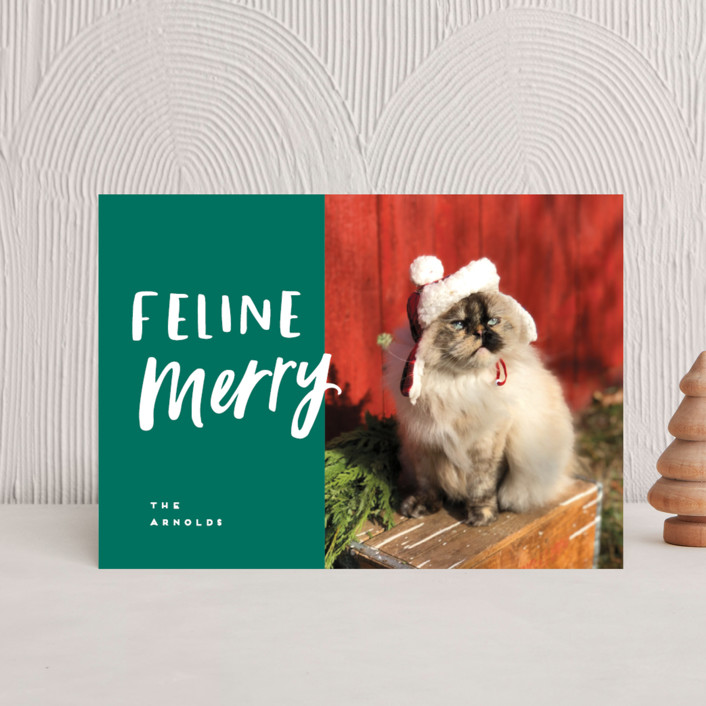 """""""Feline Merry"""" - Funny Holiday Postcards in Santa Suit by Chryssi Tsoupanarias."""