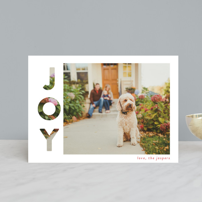 """""""Revealing Joy"""" - Holiday Postcards in Snow by Lindsay Megahed."""