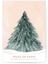 This is a white christmas postcard by Petra Kern called Snowy Pine Tree with standard printing on signature in postcard.