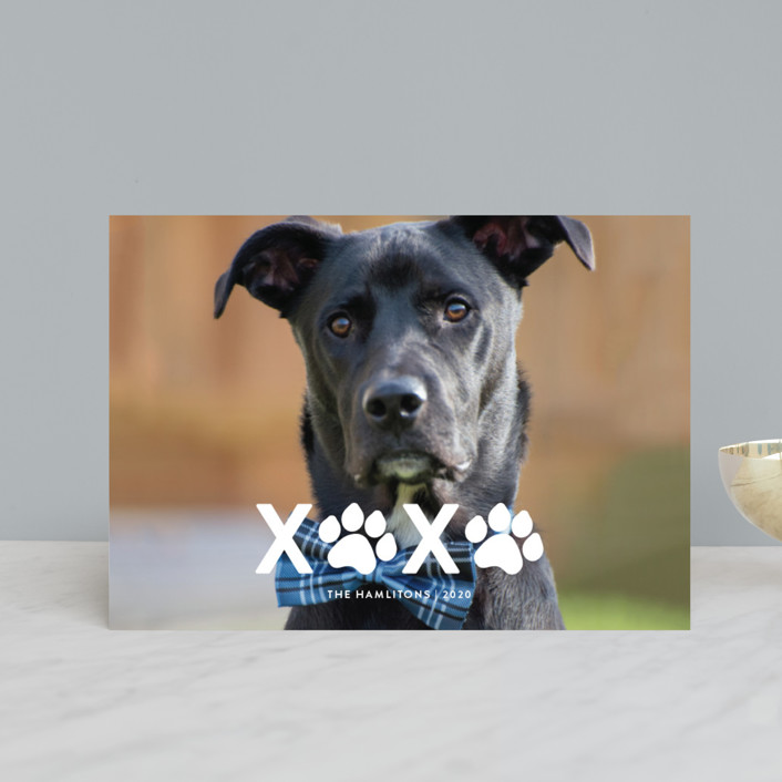 """XOXO"" - Holiday Postcards in Milk by Roxy Cervantes."