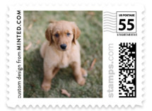 This is a white christmas stamp by Minted called The Big Picture with standard printing on adhesive postage paper in stamp.