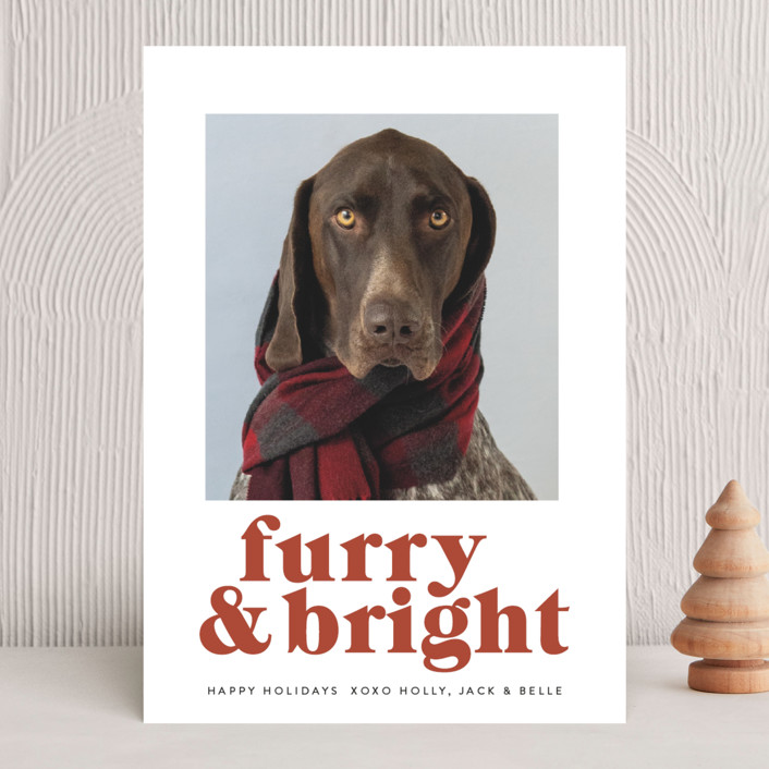 """""""Furry + Bright"""" - Funny Holiday Photo Cards in Rust by Angela Thompson."""