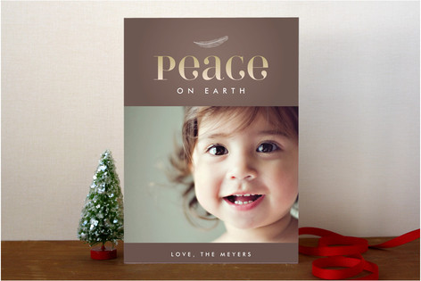 Feather Vignette Holiday Photo Cards