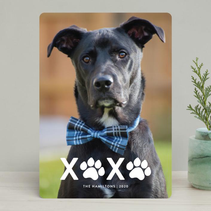 """XOXO"" - Holiday Photo Cards in Milk by Roxy Cervantes."