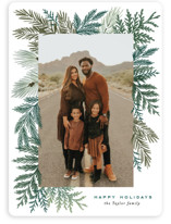 This is a green holiday photo card by Alethea and Ruth called Evergreen Variety with standard printing on smooth signature in standard.
