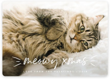 This is a white holiday photo card by Chryssi Tsoupanarias called Meowy with standard printing on smooth signature in standard.