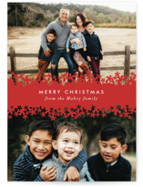 Paper Cut Snow Holiday Photo Cards By Laura Hankins