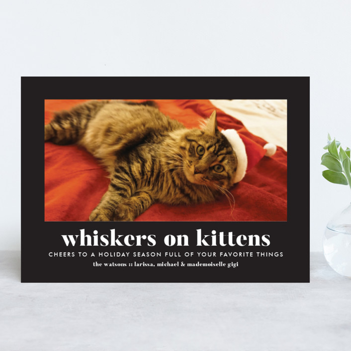 Whiskers on Kittens Holiday Cards