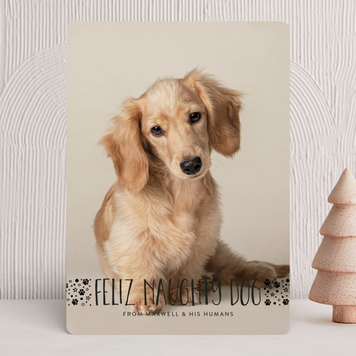 """naughty dog"" - Holiday Photo Cards in Coal by Erin Deegan."