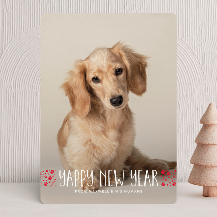 """""""naughty dog"""" - Holiday Photo Cards in Coal by Erin Deegan."""