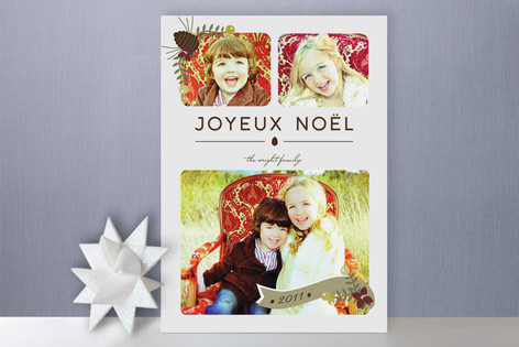 Wild Winter Holiday Photo Cards
