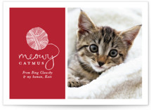 This is a red holiday photo card by Hudson Meet Rose called Meowy Catmus with standard printing on smooth signature in standard.