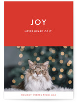 This is a red holiday photo card by Alaina Cherup called never heard of it with standard printing on smooth signature in standard.
