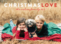 Christmas Love Holiday Photo Cards By Snow and Ivy