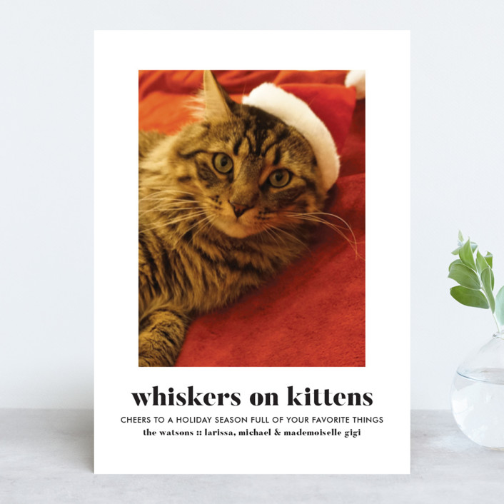 """""""Whiskers on Kittens"""" - Holiday Photo Cards in Snow by Erika Firm."""