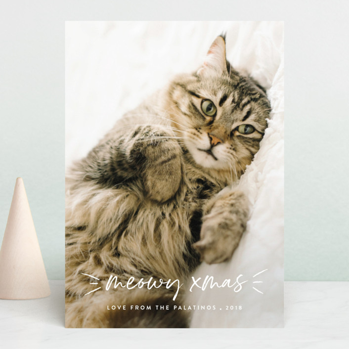 """""""Meowy"""" - Holiday Photo Cards in Snow by Chryssi Tsoupanarias."""