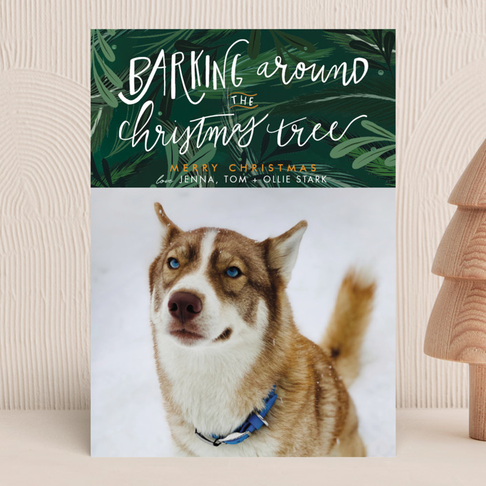 """""""Barking Fun"""" - Holiday Photo Cards in Evergreen by Stephanie Given."""