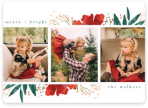 This is a red holiday photo card by Grace Kreinbrink called Fresh Blooming Frame with standard printing on smooth signature in standard.