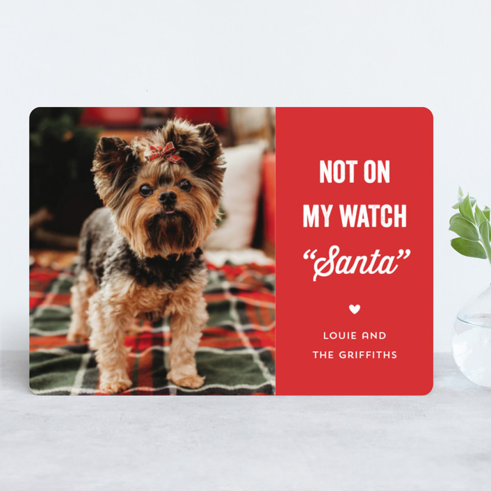 """The Fuzz"" - Funny Holiday Photo Cards in Ruby by Laura Hankins."
