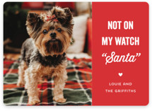 This is a red holiday photo card by Laura Hankins called The Fuzz with standard printing on smooth signature in standard.