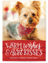 Warm Wishes Wet Kisses