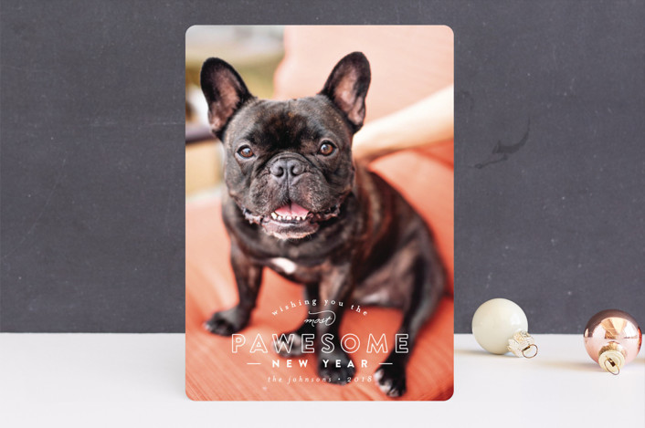 """""""Pawesome"""" - Funny Holiday Photo Cards in Frost by peony papeterie."""