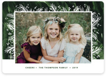 This is a green holiday photo card by Holly Whitcomb called Sugar Plum with standard printing on smooth signature in standard.