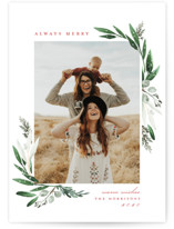 Evergreena Holiday Photo Cards By Petra Kern
