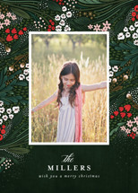 Holiday Garden Holiday Photo Cards By Angela Marzuki