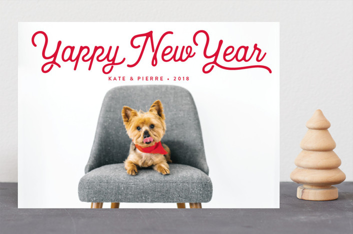 """""""Pawlala"""" - Holiday Photo Cards in Holly by Olivia Raufman."""