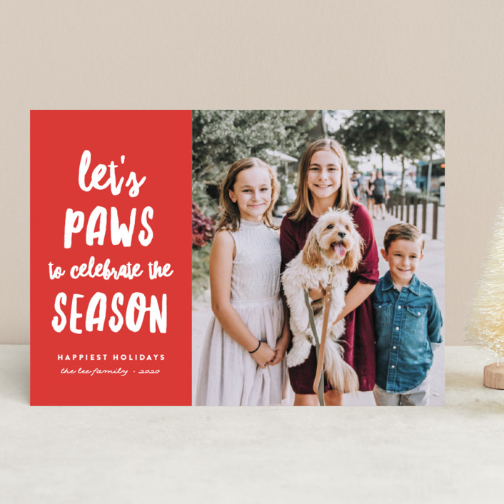 Let's Paws Holiday Cards
