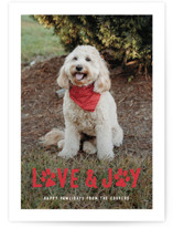 This is a red holiday photo card by Hooray Creative called Puppy Love and Joy with standard printing on smooth signature in standard.