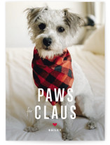 This is a white holiday photo card by Guess What Design Studio called Paws for Claus with standard printing on smooth signature in standard.