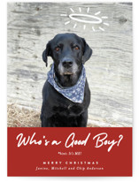 This is a red holiday photo card by J. Dario Design Co. called Good Boy with standard printing on signature in standard.