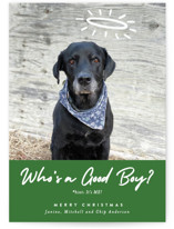 This is a green holiday photo card by J. Dario Design Co. called Good Boy with standard printing on signature in standard.