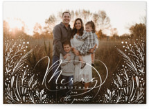 This is a white holiday photo card by Hannah Williams called Merry Overlay with standard printing on smooth signature in standard.