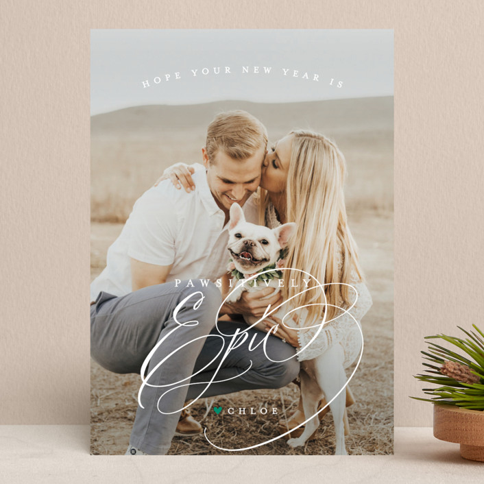 """""""pawsitively blessed"""" - Holiday Photo Cards in Pine by Guess What Design Studio."""